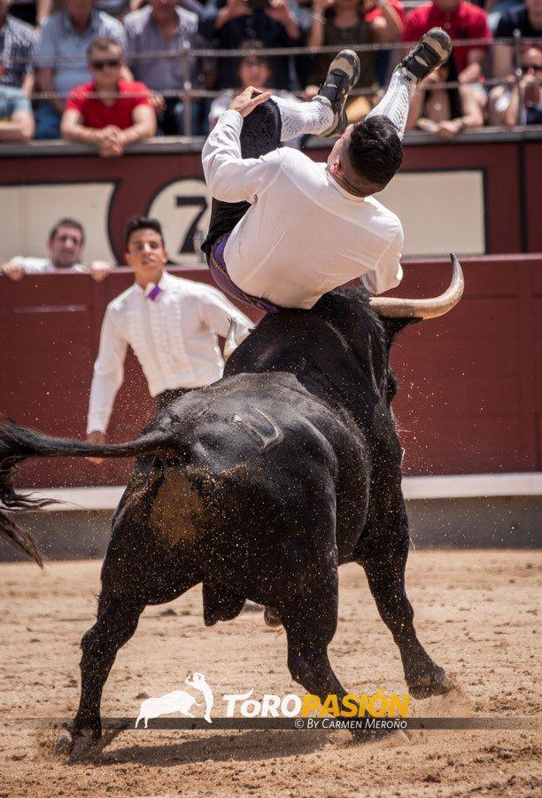 """Eusebio Sacristán """"Use"""", arriesga y gana en el Certamen de Recortadores de Élite en Las Ventas"""