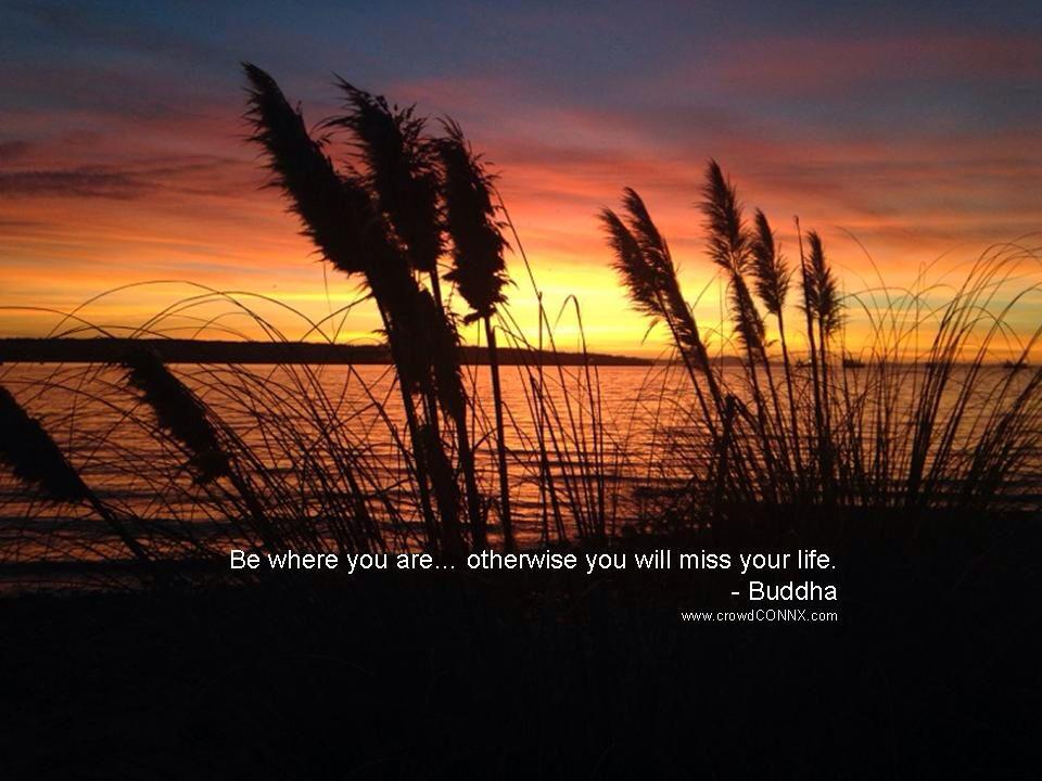 Awareness inspiration quote Buddha www.crowdCONNX.com