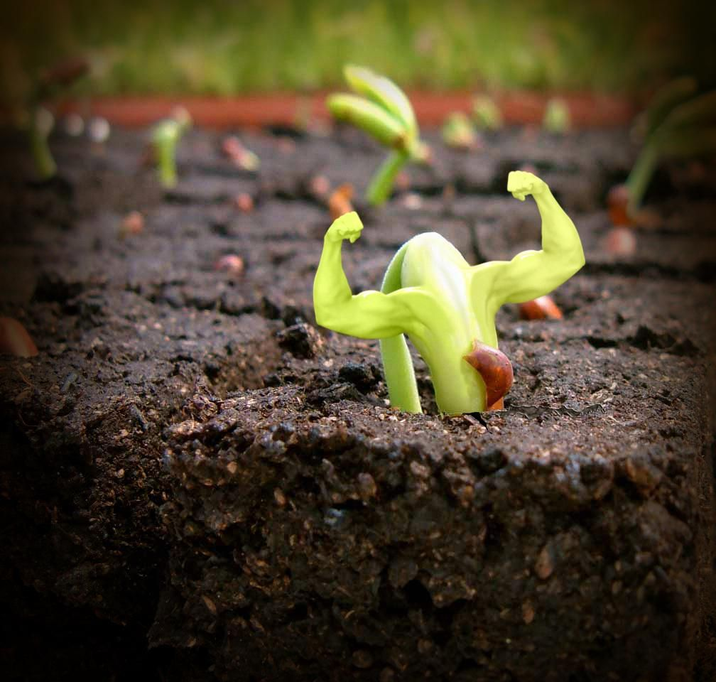 """""""Change is inevitable, growth is intentional."""" -Unknown What are you doing today in order to grow?"""