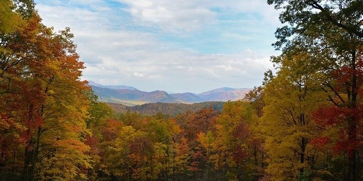 Great Smoky National Park, Tennessee, USA