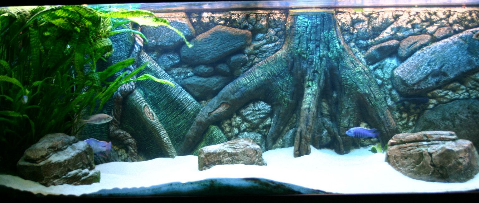 3d aquarium fish tank background feature rock - Aquarium Background 55 Gallon Aquarium Background