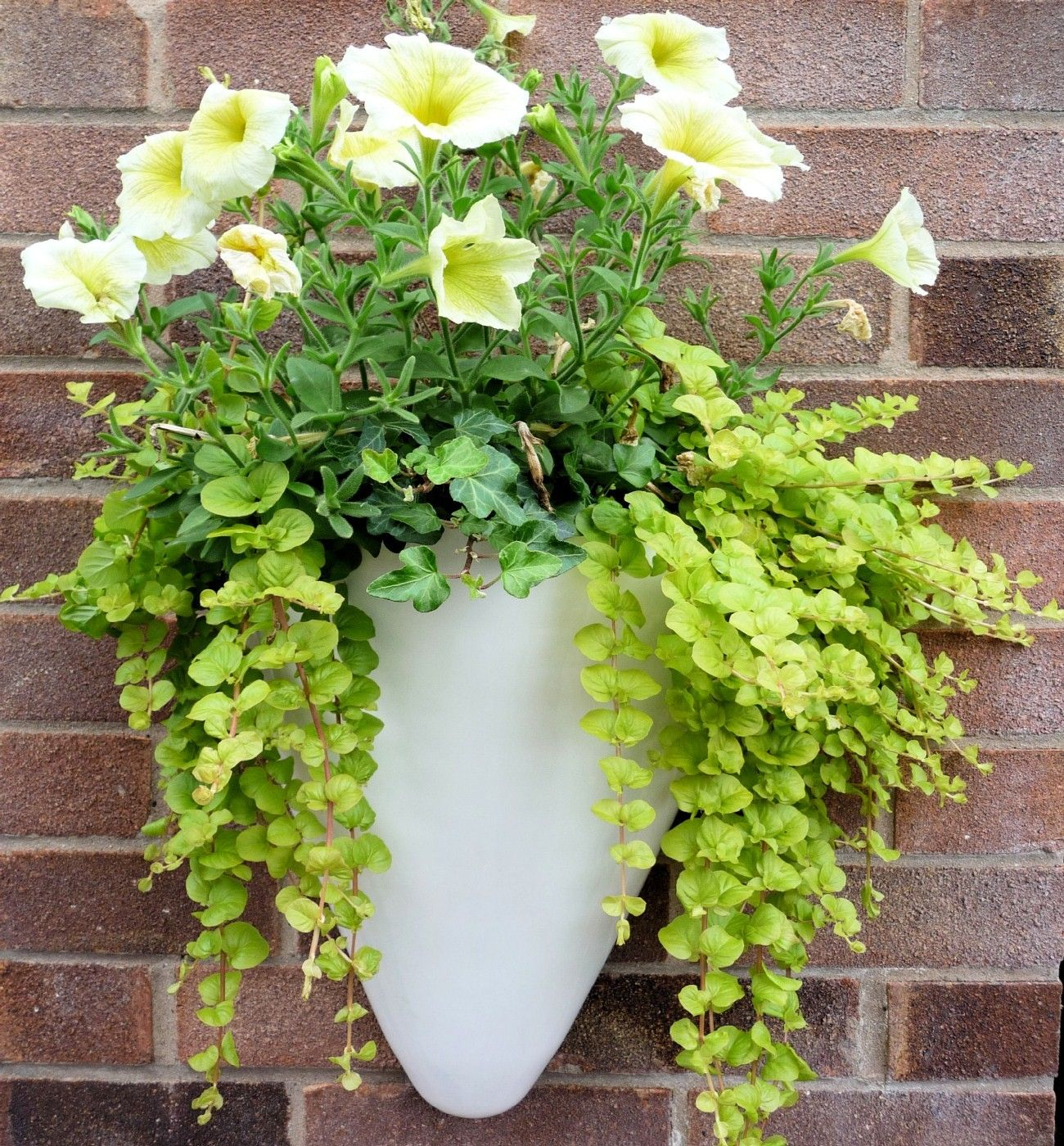 Flowers For Cone Shaped Hanging Baskets Baskets
