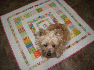 Such a cute little quilt for a cute lil dog! Great lil size & love the design :)