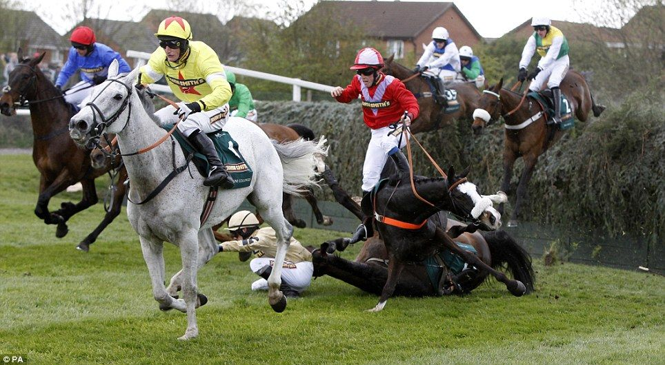 Why Did Spooked Horse Ever Run Aintree Tragedy Could Have Been Avoided Insist Racing Experts Grand National Horses Horses Grand National