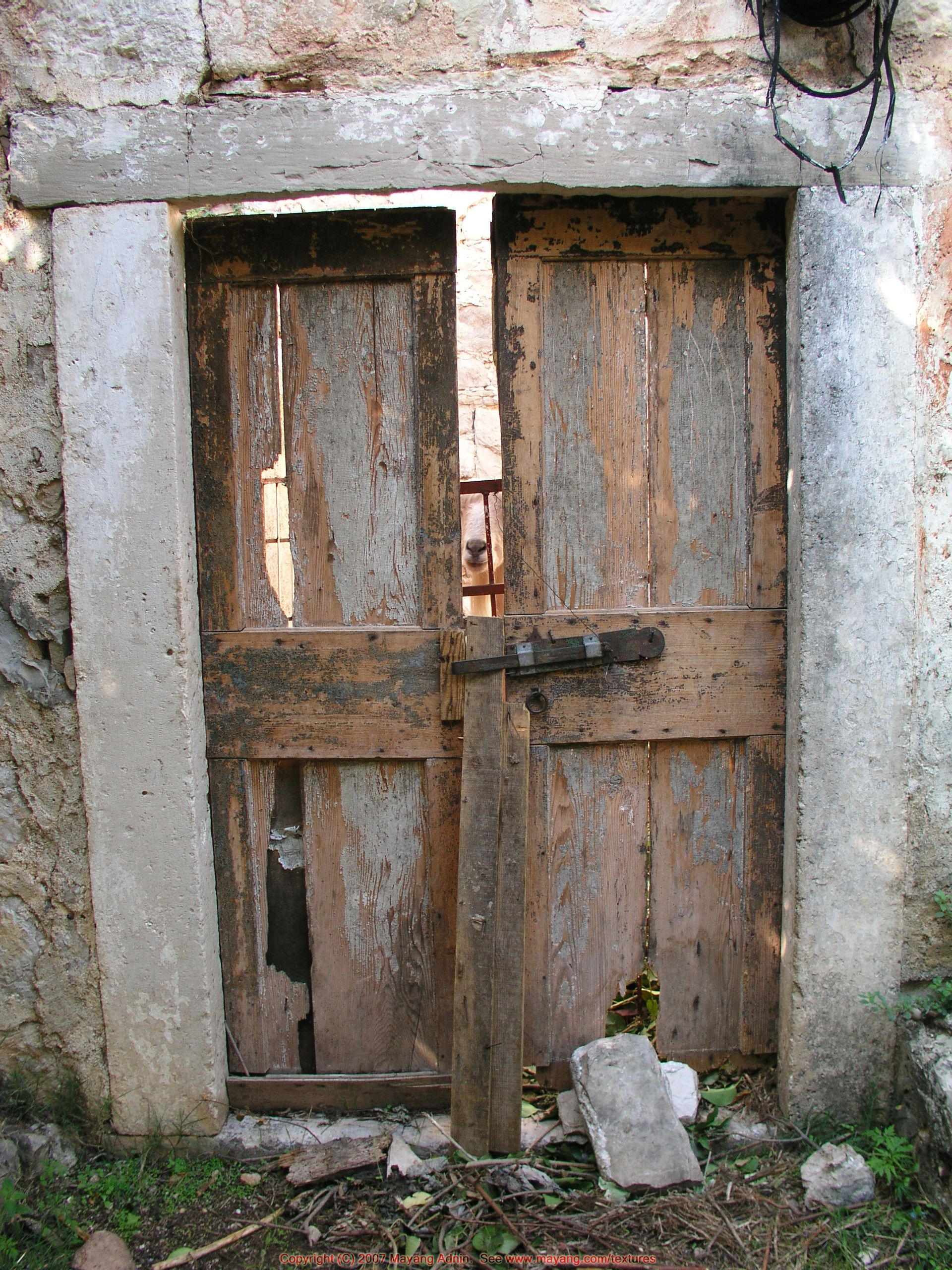 Captivating Broken Doors   Google Search