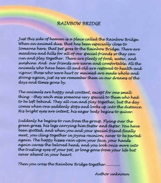 graphic relating to Rainbow Bridge Poem for Dogs Printable titled Primary Rainbow Bridge Poem  authentic variation Rainbow