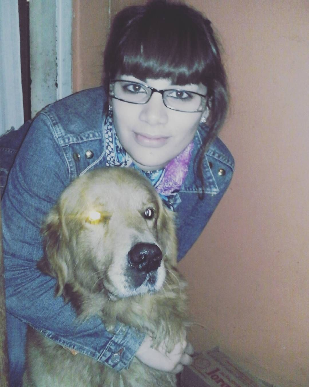 Corte que Neron salio re terminator :p #terminator#dog#amor#canino by melu_fortin