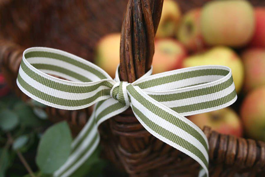 Sage and Cream stripe apple