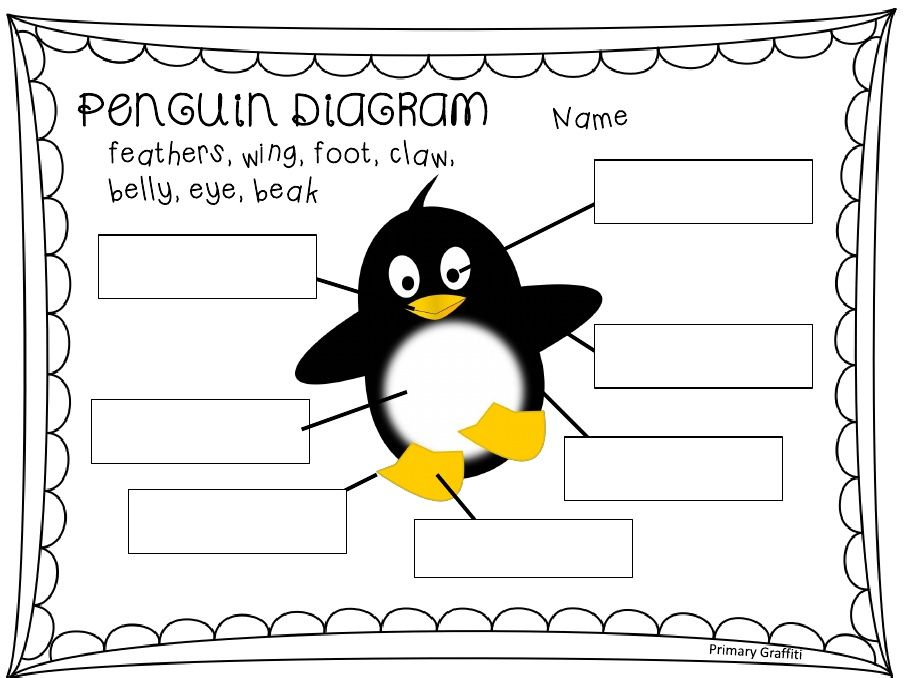 Penguin Diagram Classroom Fun Penguins Tacky The Penguin