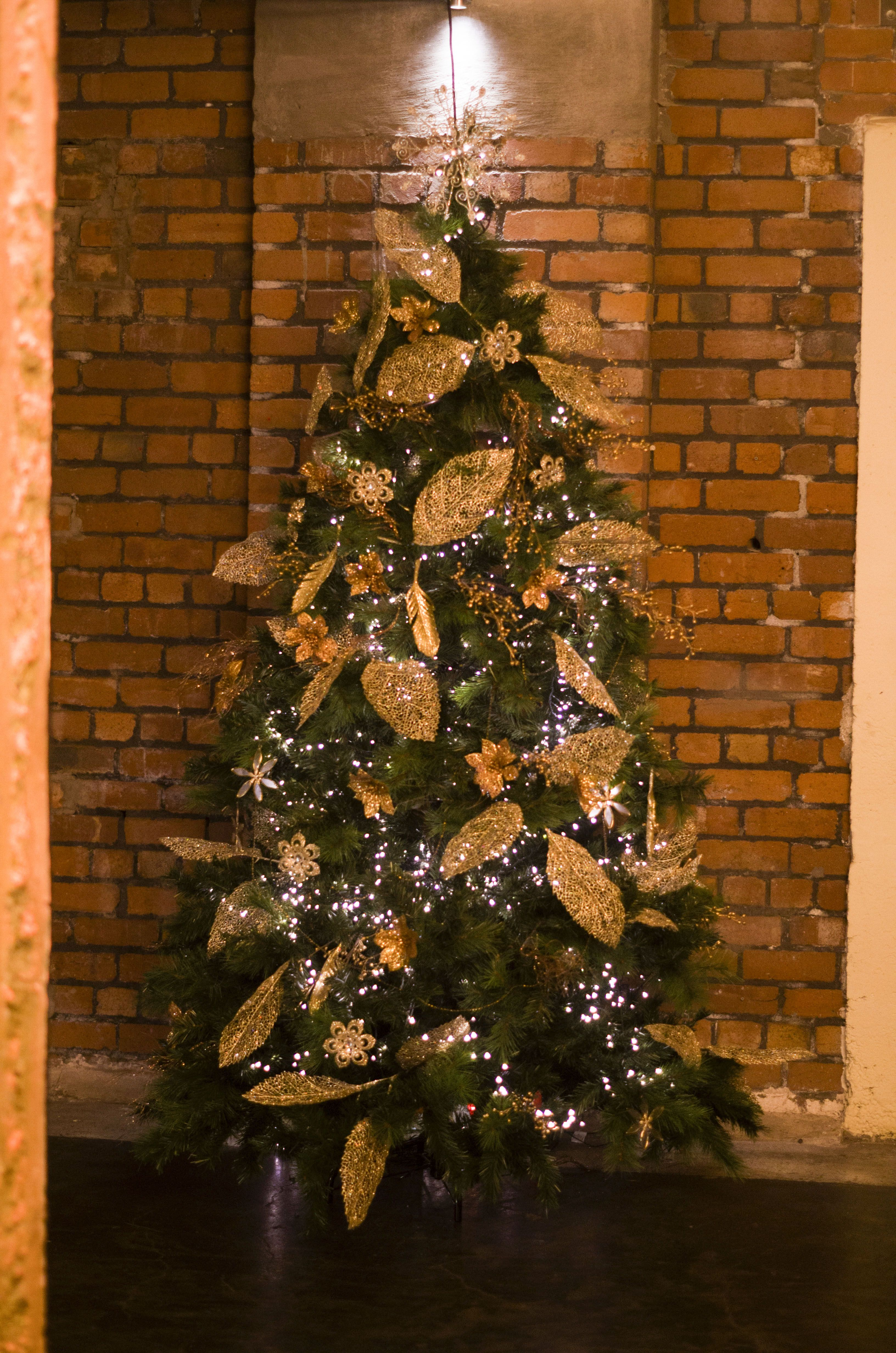 traditional christmas tree christmas parties in 2018 pinterest rh pinterest com