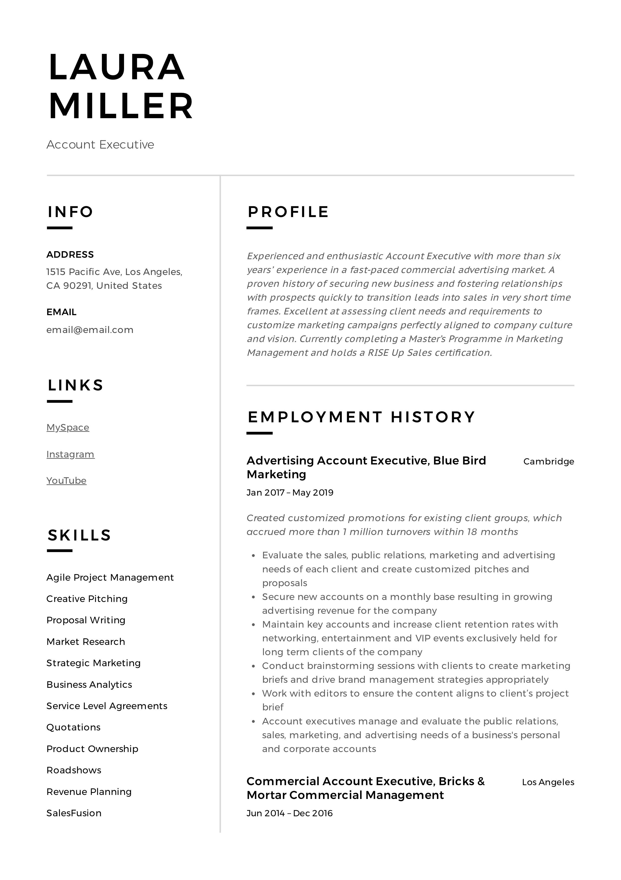 Professional Account Executive Resume, template, design