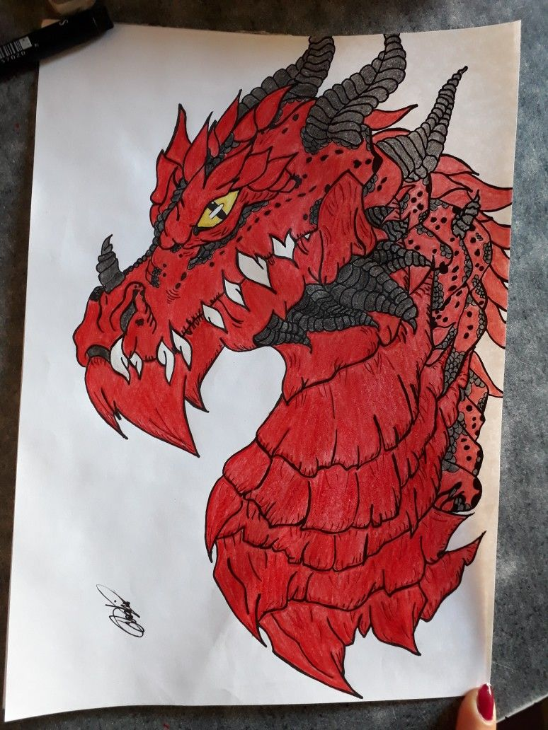 Dragon Dibujos Pintar Dragones