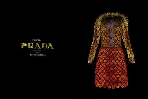 haute couture at the end of the meal - Prada by Fulvio Bonavia