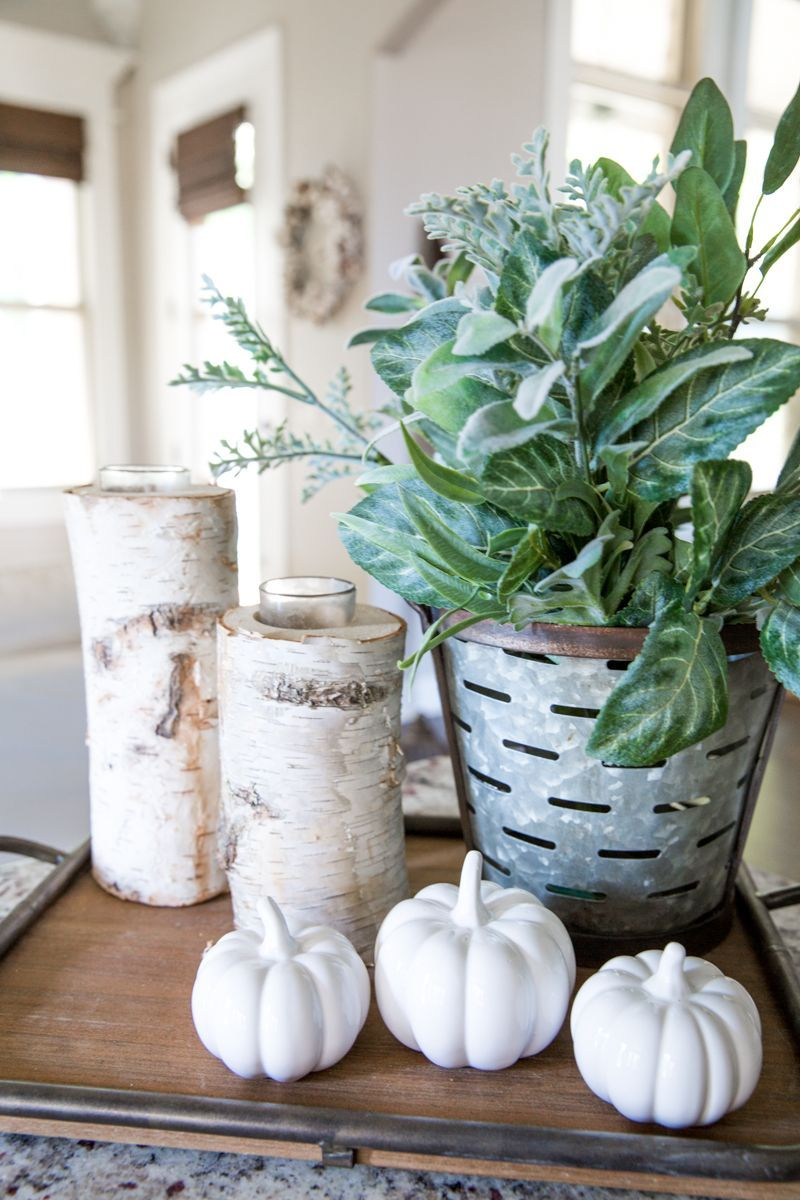 Fall decor ideas and inspiration for using neutral colors modern