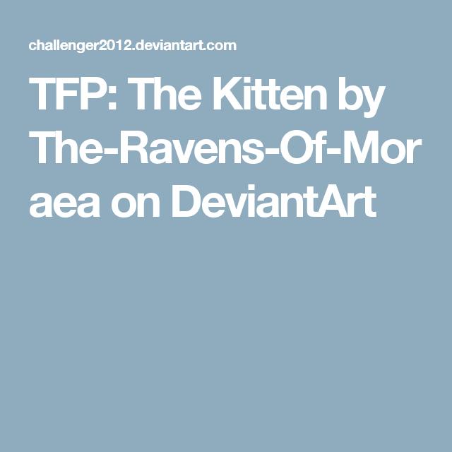 TFP: The Kitten by The-Ravens-Of-Moraea on DeviantArt