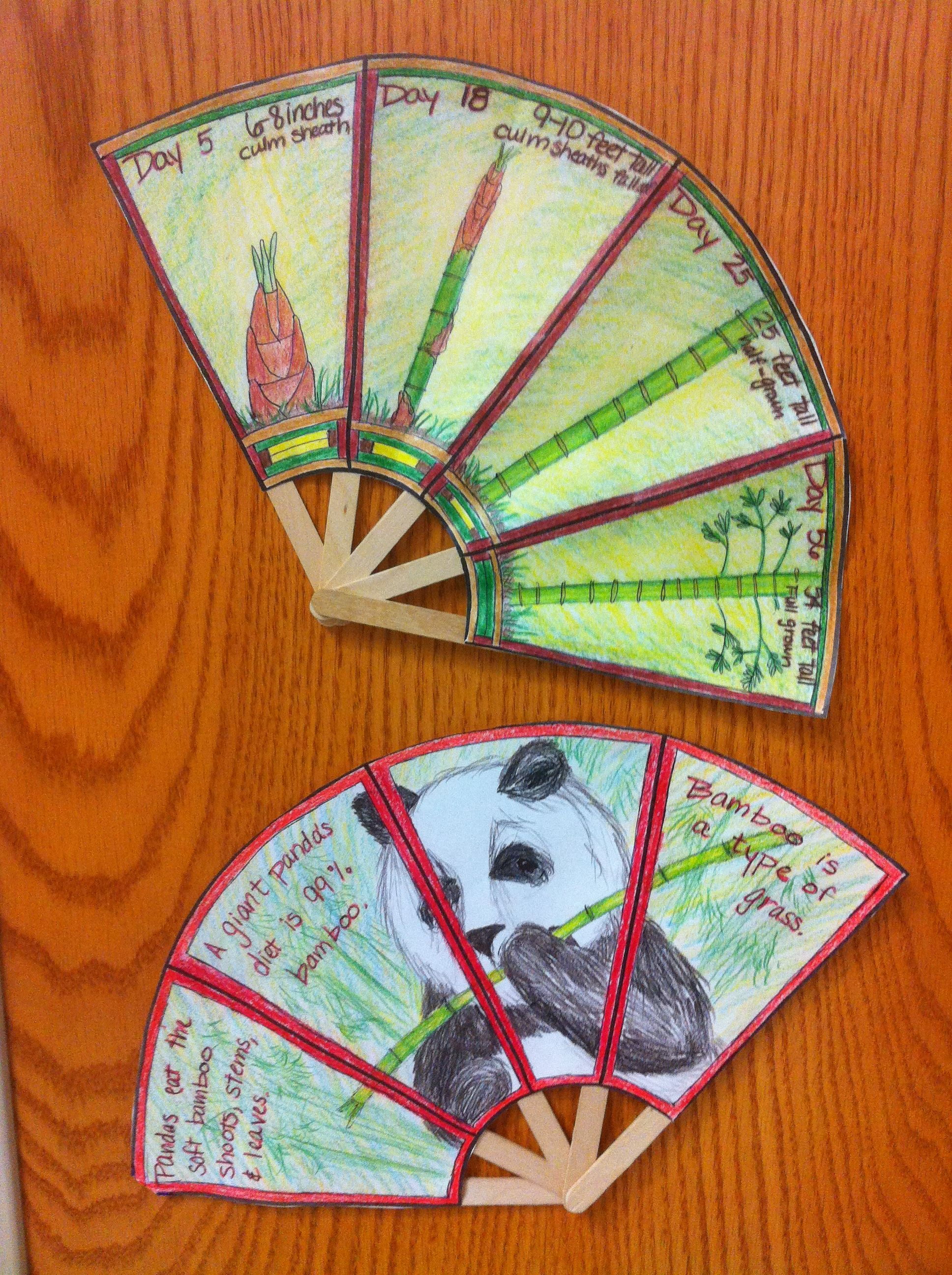 Bamboo Information Fans Can Be Used To Report A Variety