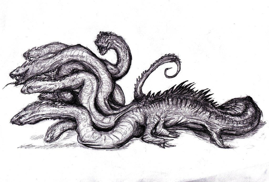 lernean hydra picture