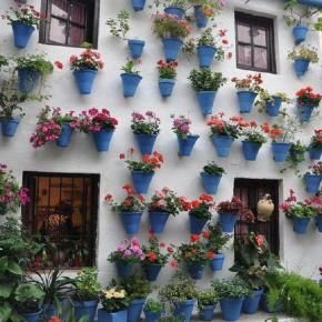 Never saw a house so full of flowers , outside.