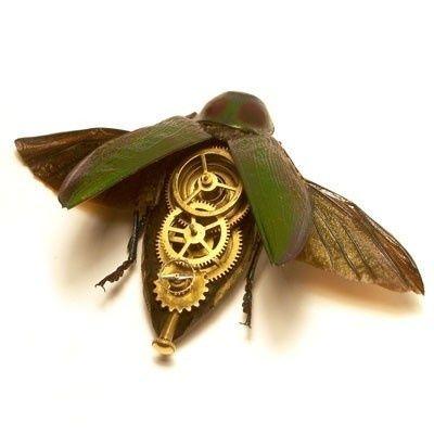 Steampunk bug. #steampunk