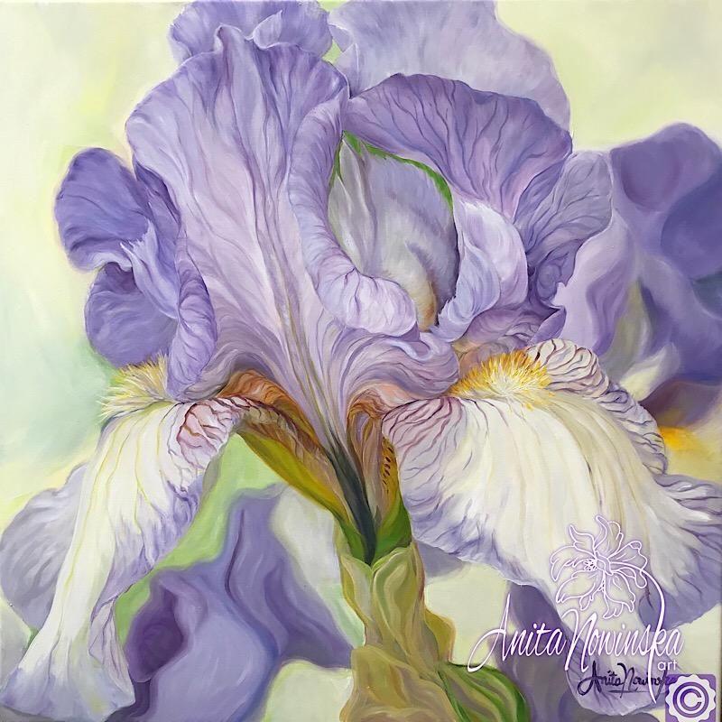 Patience Lilac Iris Flower Painting Flower Painting Flower Painting Canvas Floral Watercolor Paintings