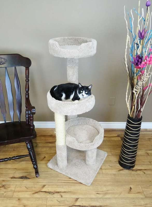 New Cat Condos Cat Climbing Tree For Large Cats In Beige Cat Climbing Tree Cat Climbing Cat Tree Designs