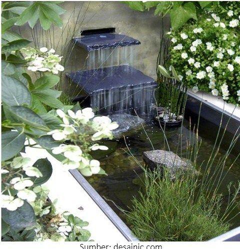 desain kolam ikan di halaman rumah   water feature
