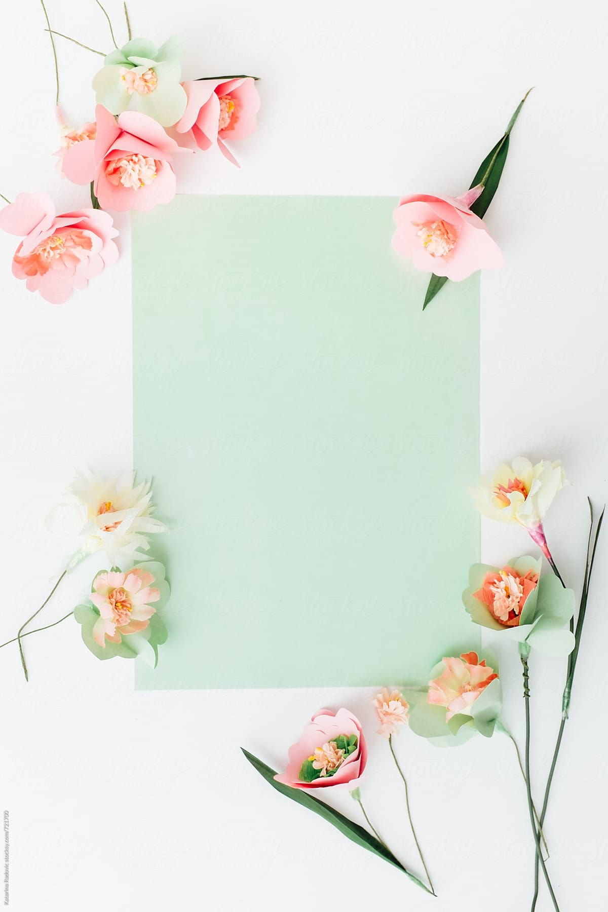Paper Flowers Arranged With A Green Pastel Background Download This High Resolution Stock Photo By Katarina Ra Pastel Background Flower Wallpaper Paper Flowers