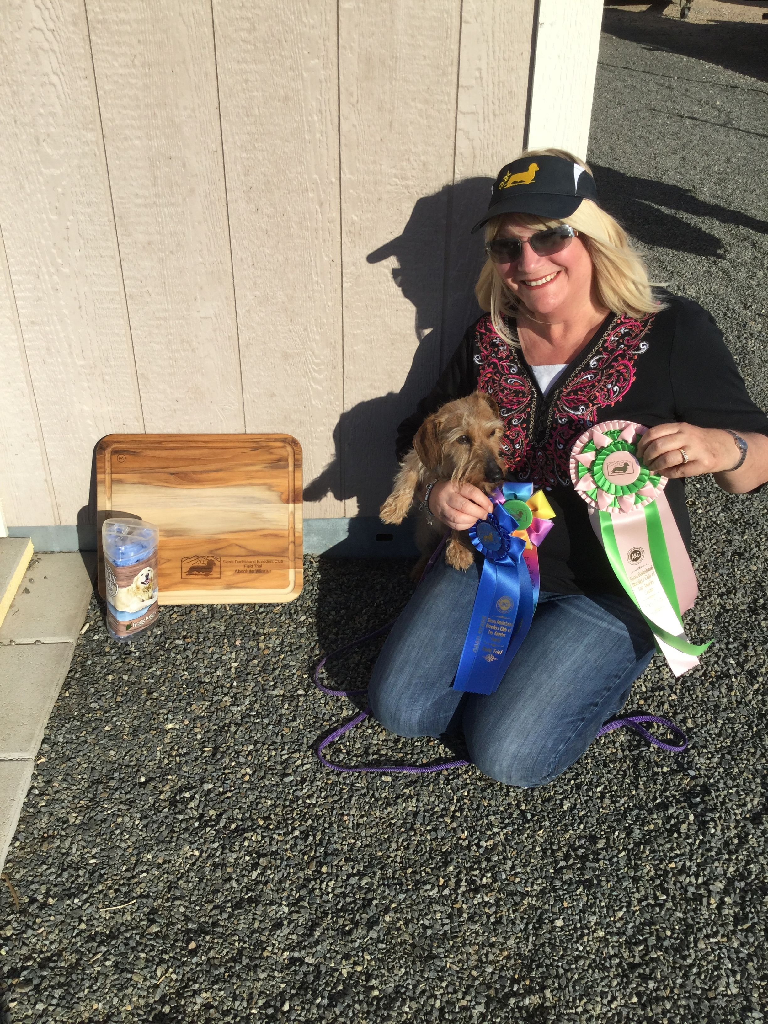 Teddy Won Absolute Sierra Dachshund Breeder S Club Of Los