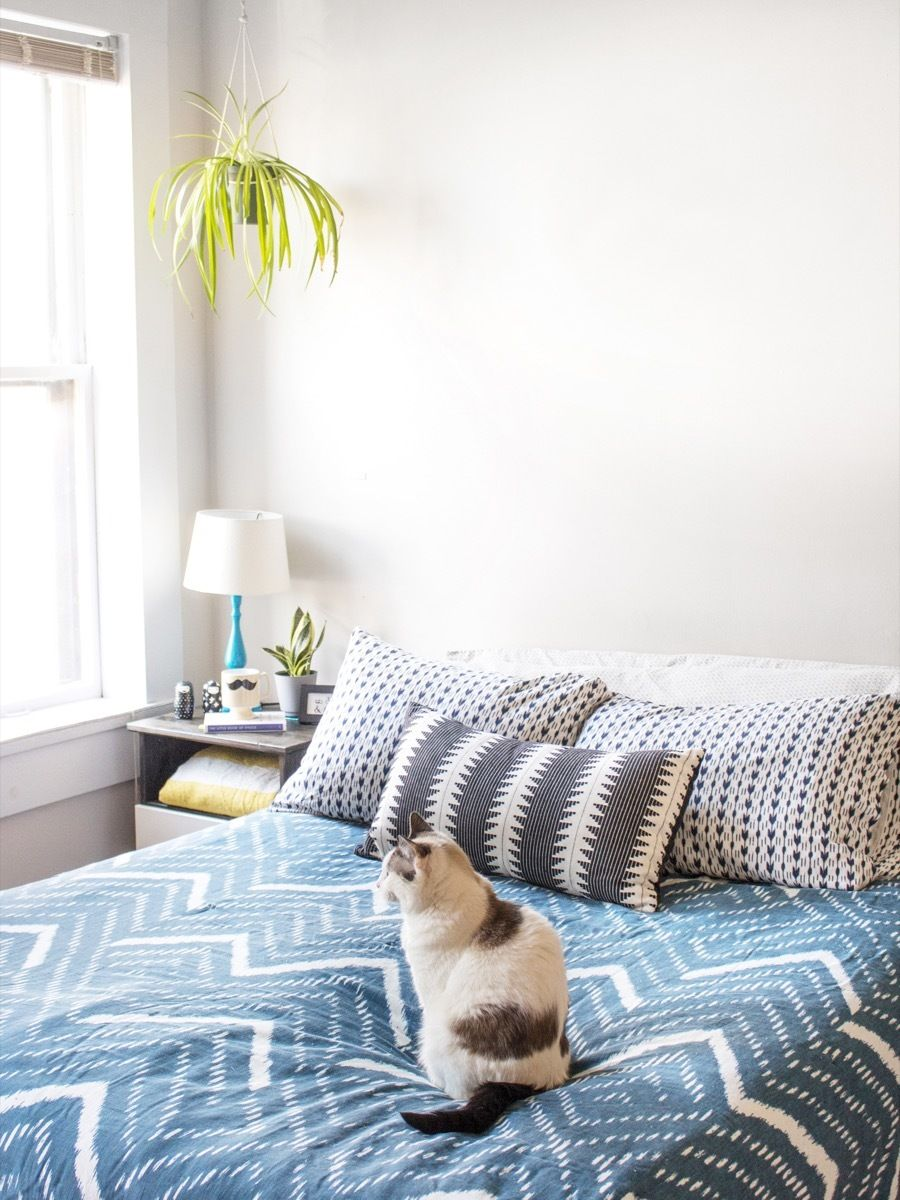 Start Off the New Year Fresh How to Clean Your Mattress