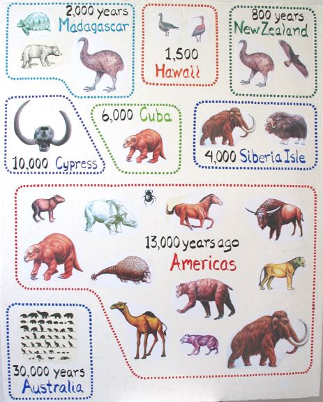 Extinct Giants And Old Japanese Cars