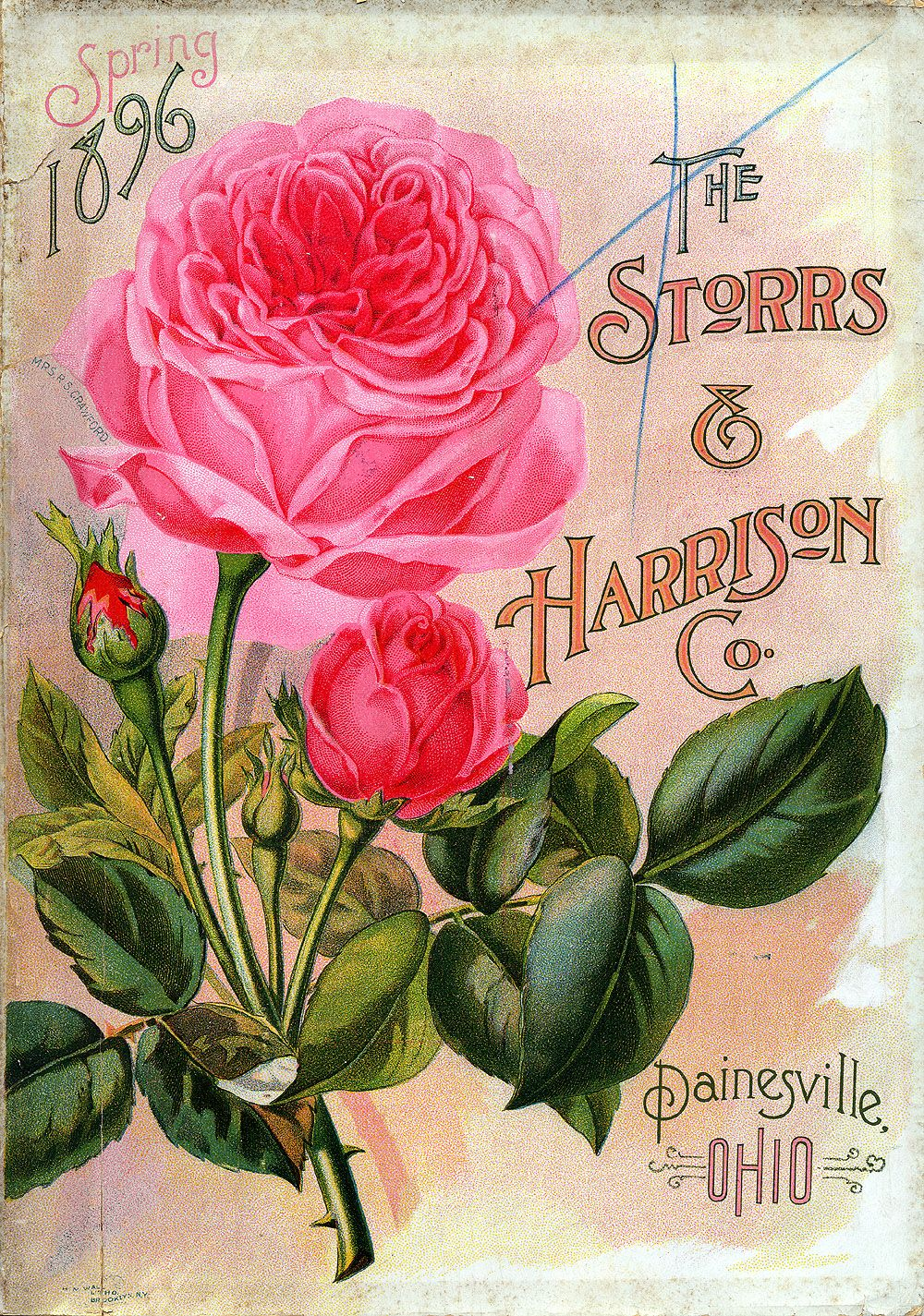harrisons blomster