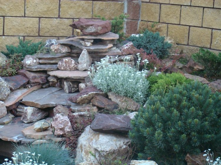steingarten-gestalten-schiefer-platten-pflanzen-auswahl | garten,