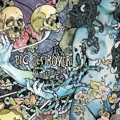 Pig Destroyer Phantom Limb Vinyl Lp Pig Destroyer John Dyer Album Cover Art