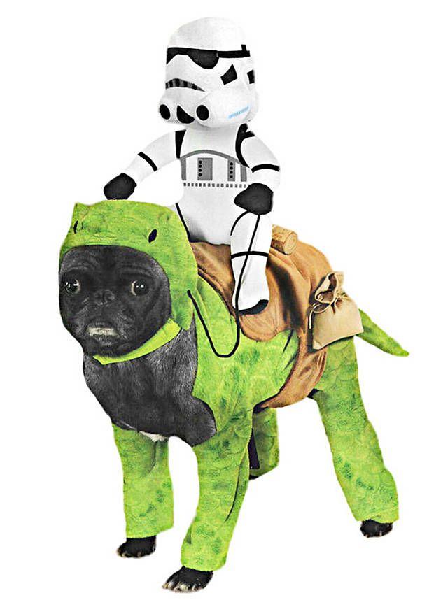Taurücken mit Stormtrooper Star Wars Hundekostüm | Hundekostüme ...