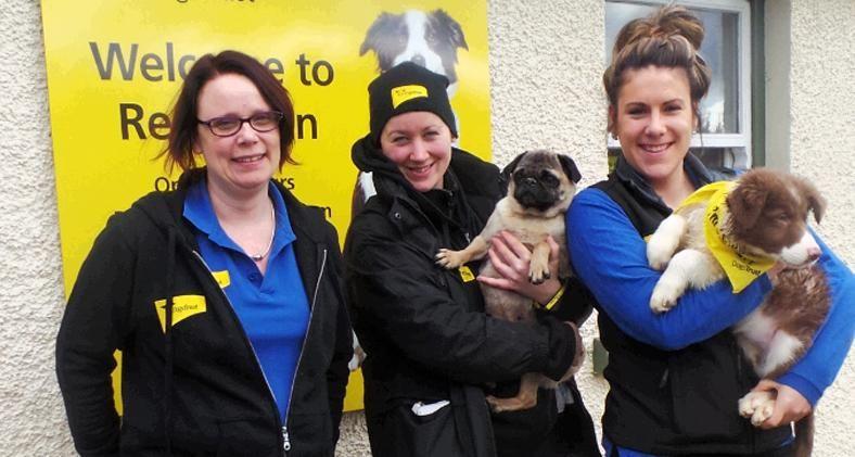 Tara, Lisa and Emma are Northern Ireland Dog School Team