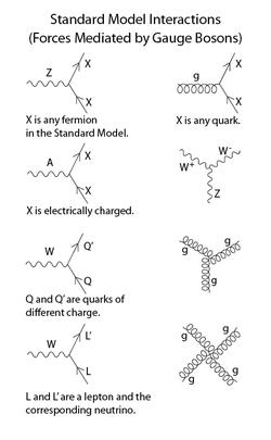 Standard Model Wikipedia The Free Encyclopedia Modern Physics Quantum Physics Theoretical Physics