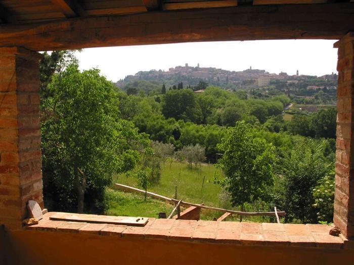 Fattoria San Martino, Tuscany. Our farm is in a privileged
