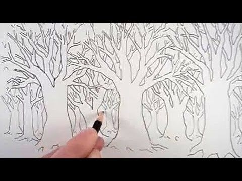 How To Draw A Tree And A Forest Forest Drawing Tree Drawing Drawings
