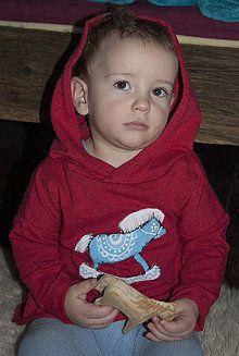 Detské oblečenie - Kon kon mikinka - 7592463_