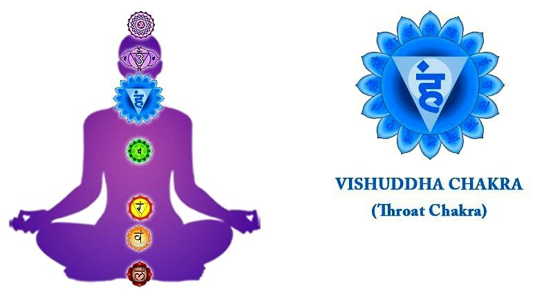Vishuddhi chakra is associated with thyroid and parathyroid