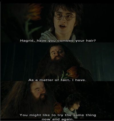 harry potter and hagrid :) | Too many fandoms. | Pinterest ...