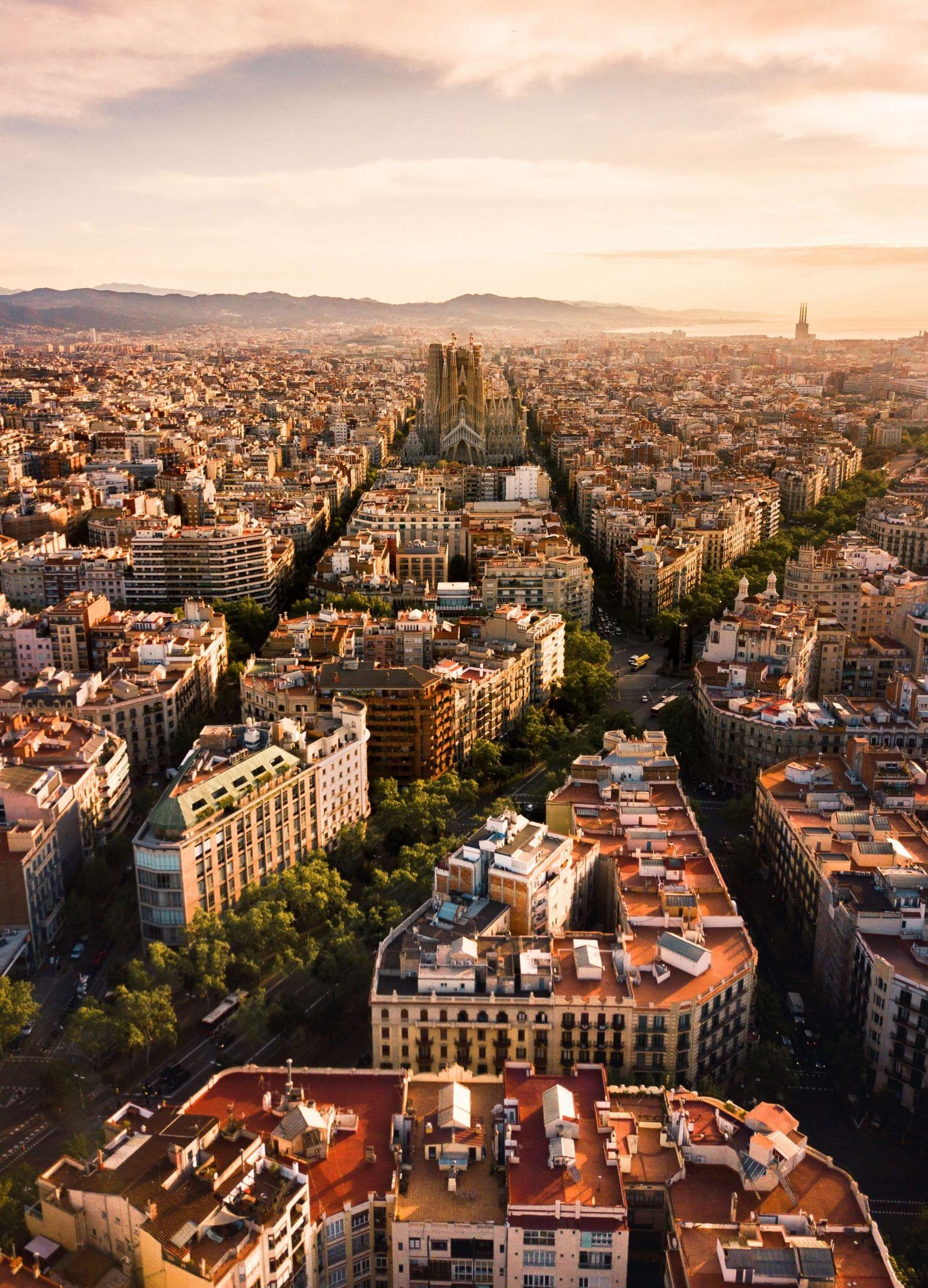 10 Epic Reasons Why You Will LOVE Barcelona | La Belle Society