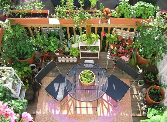 11 Deck Vegetable Garden Ideas To Grow More In Less Space 400 x 300
