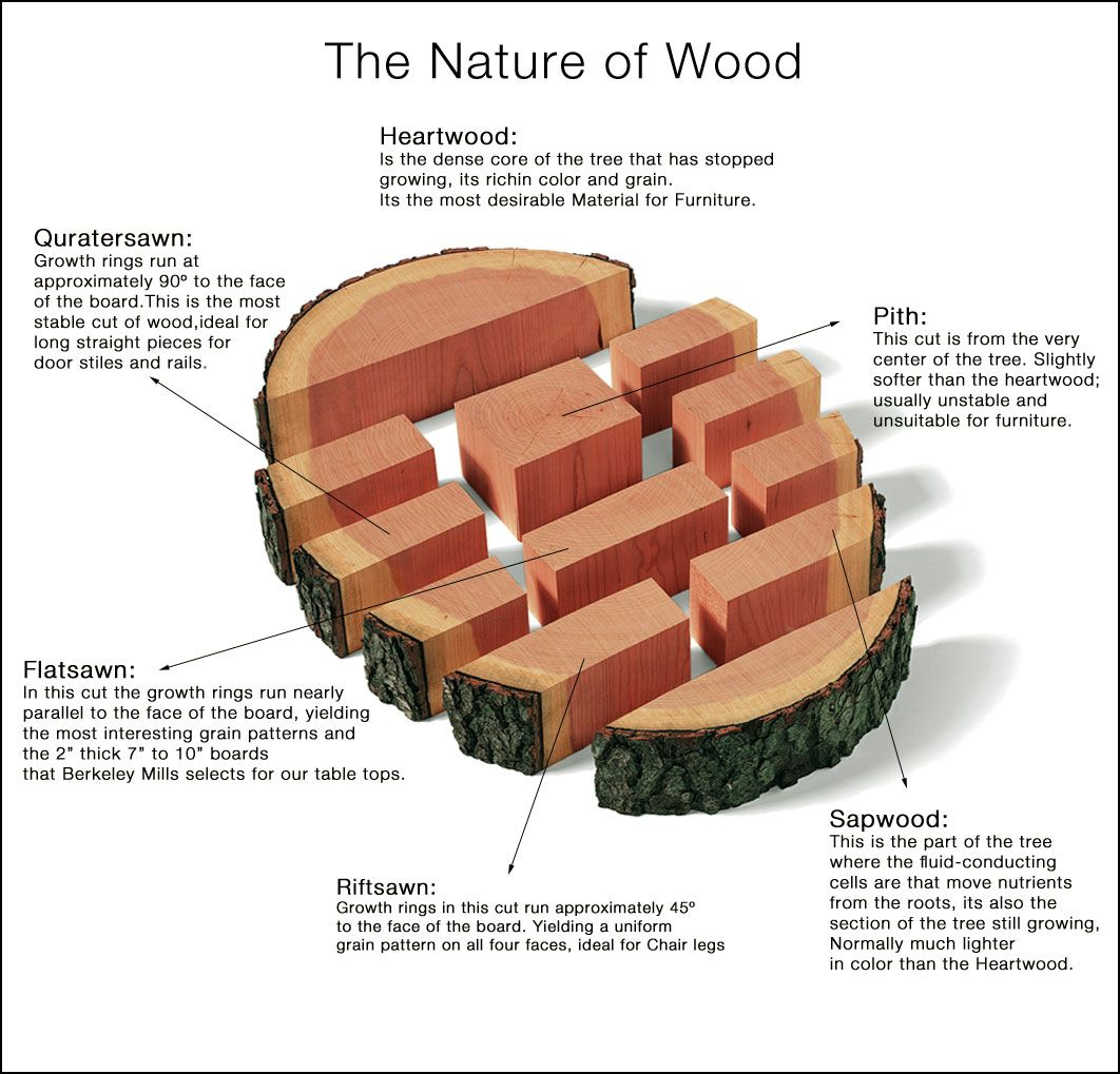 the-nature-of-wood-copy | wood: understanding wood grain and