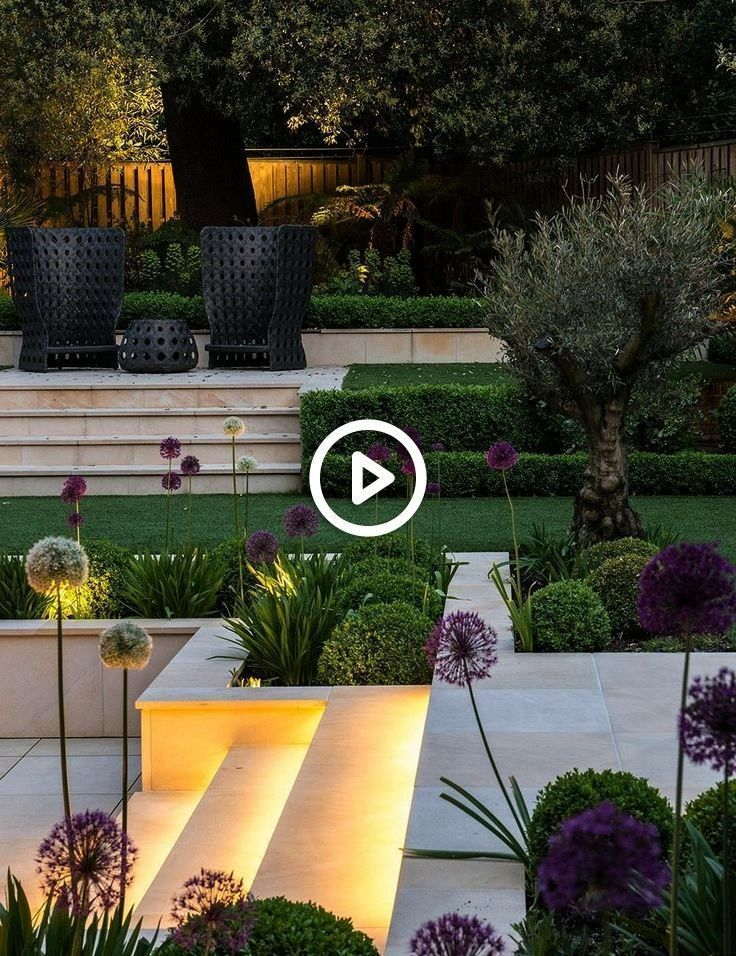 landscaped garden with round box hedges multiple levels and agapanthus landscaped garden with round box hedges multiple levels and agapanthusModern landscaped garden with...