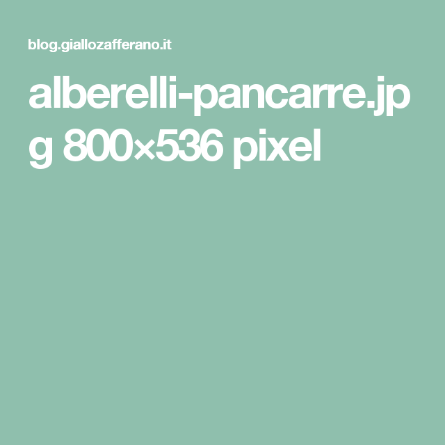 alberelli-pancarre.jpg 800×536 pixel