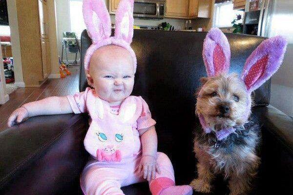Картинки по запросу funniest animals with children