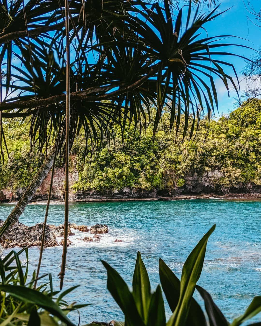 Ocean View On Hilo Side Of Big Island Hawaii 3240x4032 Oc Music Indieartist Chicago Big Island Hawaii Amazingly Beautiful Big Island