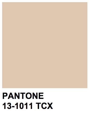 Pantone 13-1011 TCX Color Name: Ivory Cream | Beiges~ Warm