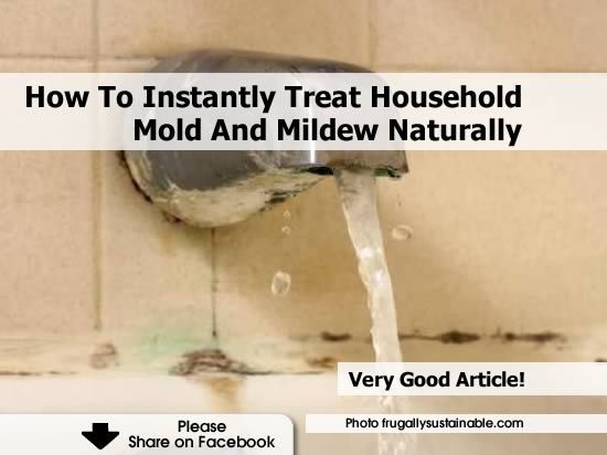 How To Instantly Treat Household Mold And Mildew Naturally Http - Natural mold remover for bathroom